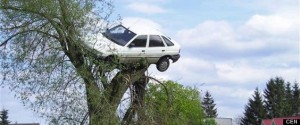 """pictured: car on tree in Lubczyna. Fed up neighbours put the brakes on a boy racer after months of being driven barking by his antics - by hoisting his car to the top of a tree. Road hog Zbigniew Filo, 24 - who doesn't even have a licence - woke to find his souped up white Ford Escort dangling from a huge willow tree in Lubczyna, Poland. Locals have refused to say who carried out the prank, but have revealed that one villager's mobile crane was borrowed for the night. Police spokesman Marta Pierko confirmed: """"We received a call from a man saying his car was stuck in a tree, and that his neighbours had put it there."""" """"After inspecting the site we instructed him to remove it from the tree,"""" she added. One local explained: """"Whoever, or whatever it was, it's probably a good thing as he was a dangerous driver and could have killed someone. """"Perhaps he'll think twice about his hair-raising driving and about getting a licence or who knows where his next car might end up?"""" Now shamefaced Filo has promised to change his driving style. """"I get the message, but I think it was a bit harsh,"""" he said.."""